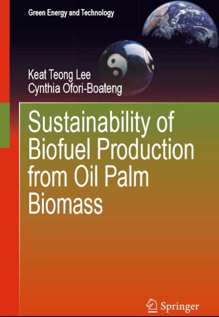 Sustainability of Biofuel Production from Oil Palm Biomass